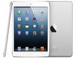 One Happy iPad Mini Owner