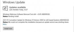 Fig-2-Windows-Update_2021-01-13-1.jpg