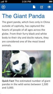 office panda