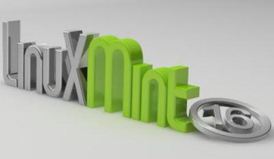 Mint- smaller