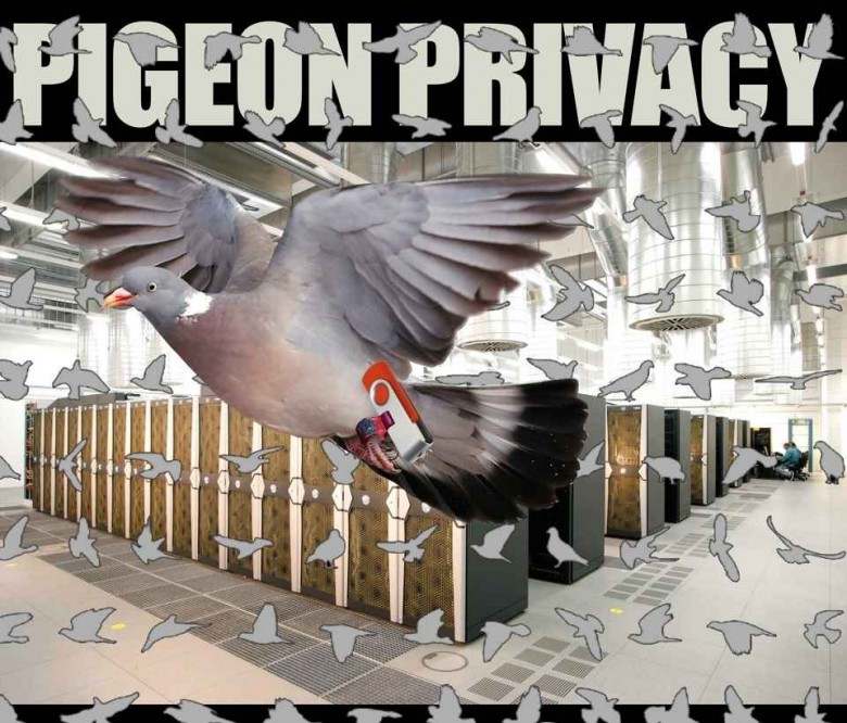 PigeonPrivacy-2