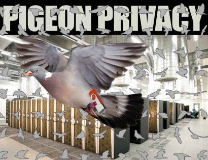 PigeonPrivacy-feature