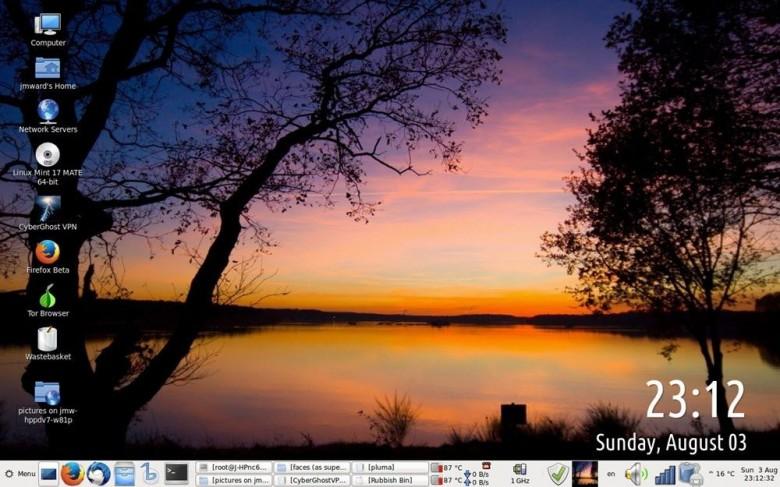 LinuxMintScreenshot(sm)