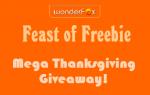 WonderFox Mega Giveaway: 6 Titles, $150 Total Value