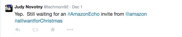 echo christmas tweet