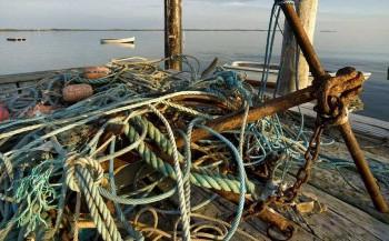 tangle-ropes