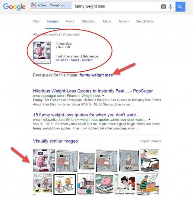 How-To-Search-Using-Images-On-Google-Pic-7