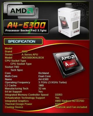 a4-6300
