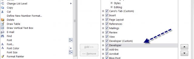 word 2010 developer toolbar