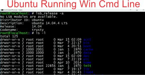 Ubuntu runnin in Win cmd line