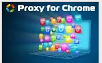 chrome proxy logo