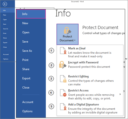 word 2013 document protection