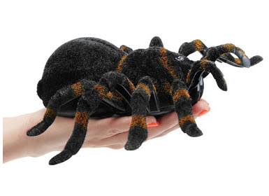 rc-giant-tarantula-on-hand