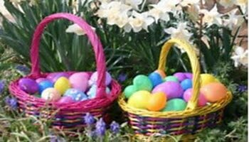 wonderfox-easter-feature-image