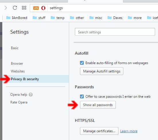 Finding Forgotten Passwords Hidden In Browser | Daves