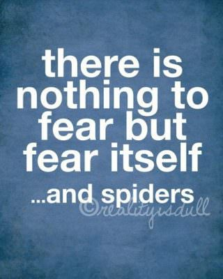 there-is-nothing-to-fear