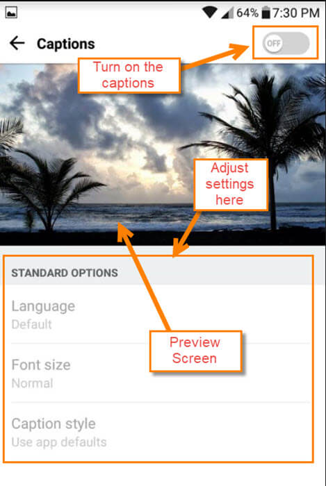 How To Change Caption Settings On Hulu | Daves Computer Tips