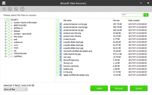 iboysoft-data-recovery-final-step
