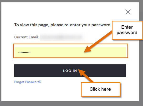 password-window