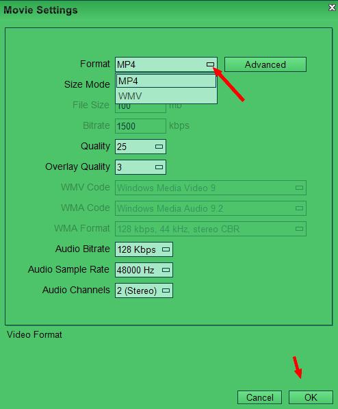 free-crop-video-movie-settings-wmv-mp4