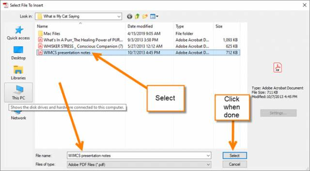 select-file-window