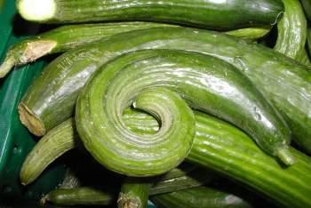 green-cucumbers