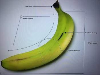 banana-default
