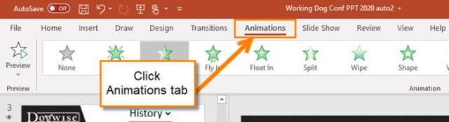 animations-tab