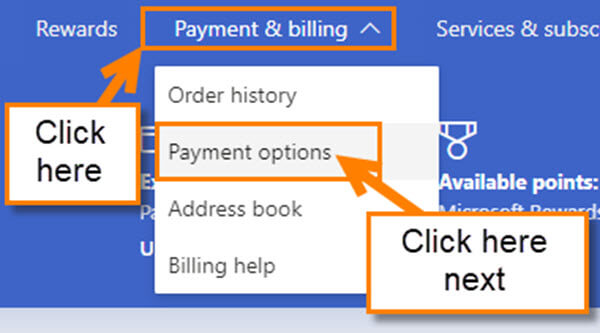 payment-options-link