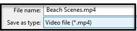 save-video