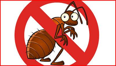 serial-pest-control