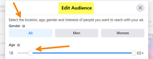 edit-audience-section