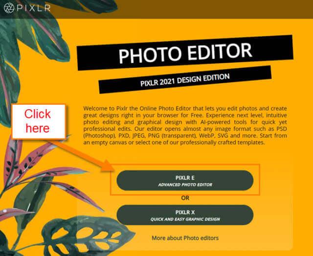 pixlr-e-option